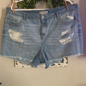 Charlotte Russe denim destroyed shorts size 18nwot